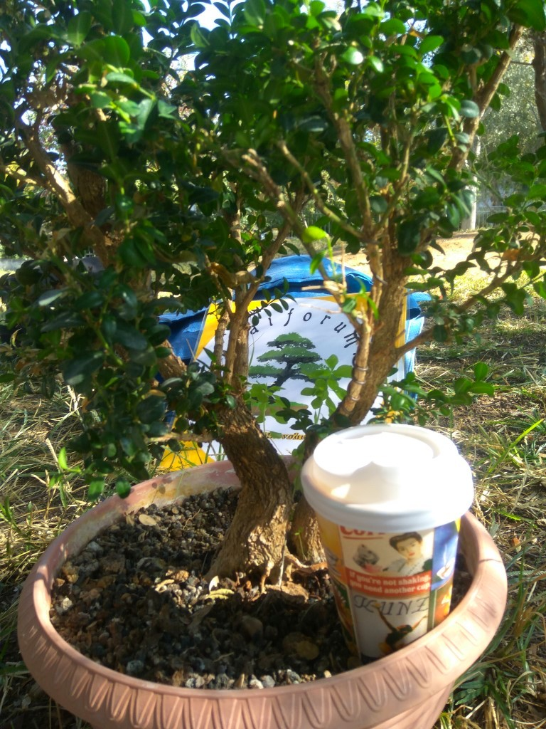 workshop_nov_2017 (11).jpg