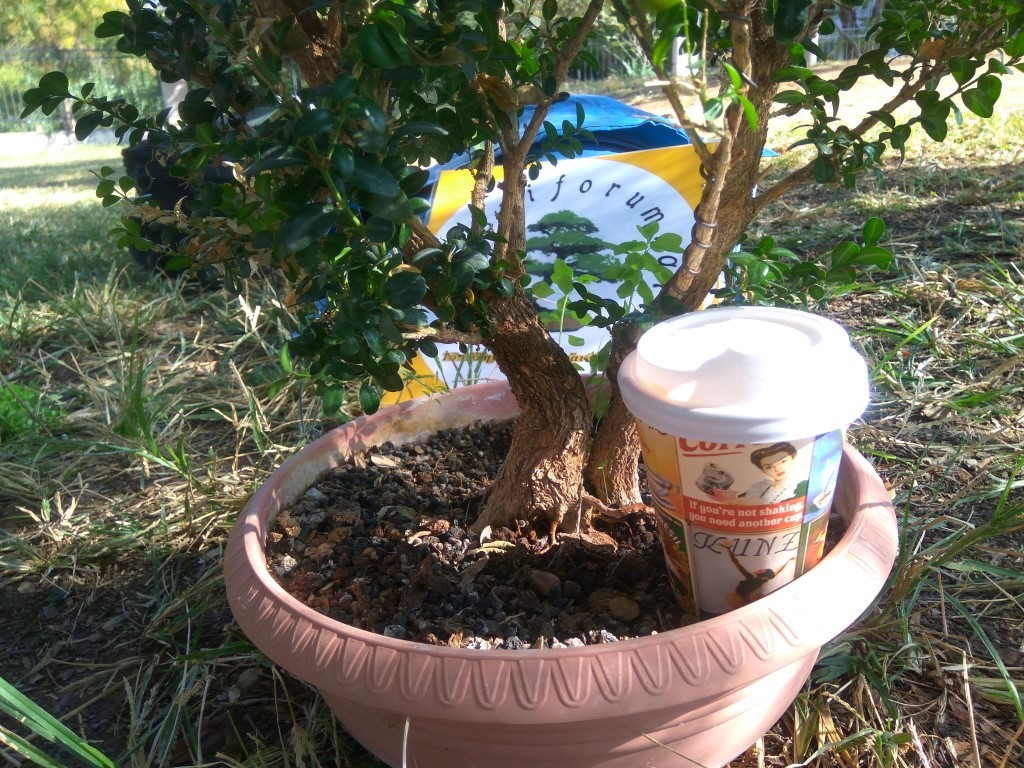 workshop_nov_2017 (12).jpg