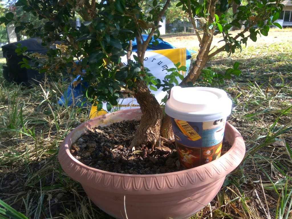 workshop_nov_2017 (13).jpg