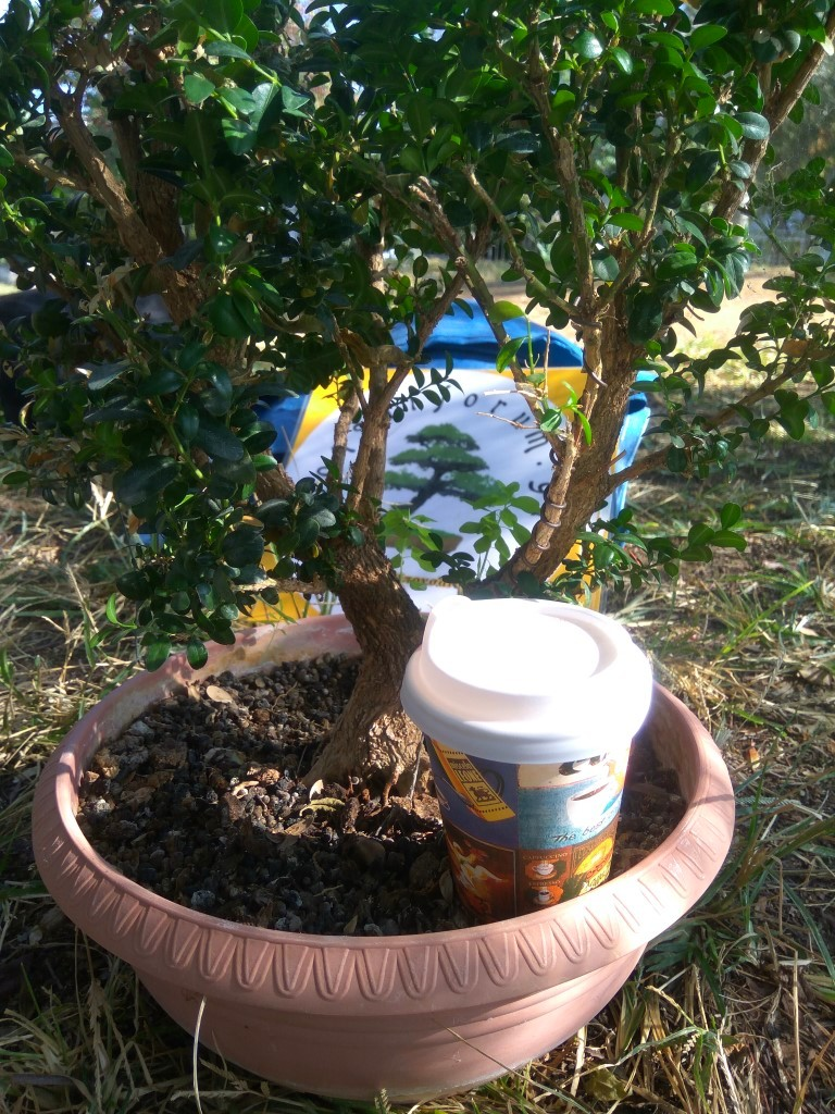 workshop_nov_2017 (14).jpg