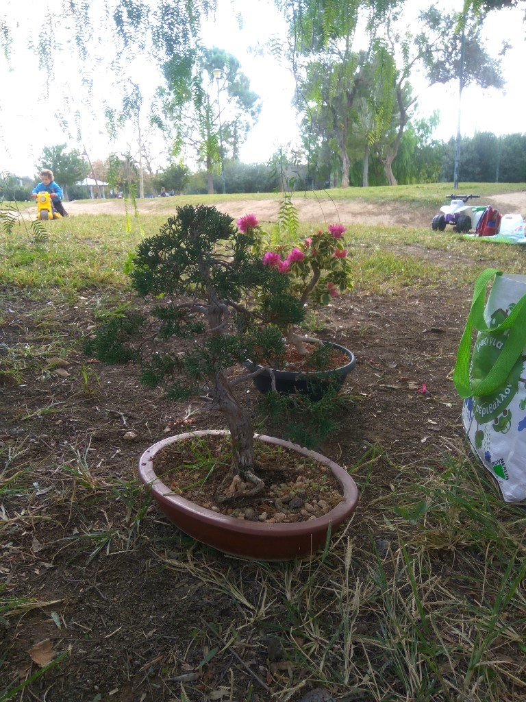 workshop_nov_2017 (30).jpg