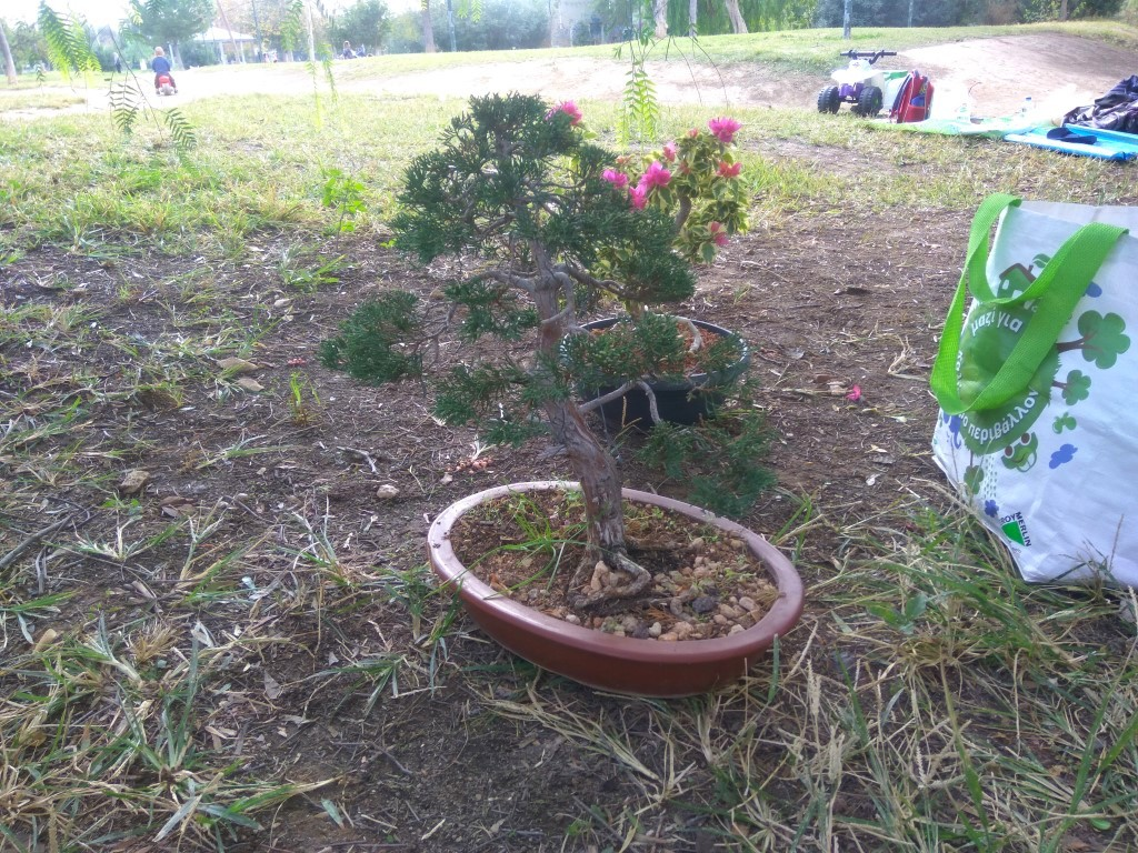 workshop_nov_2017 (31).jpg