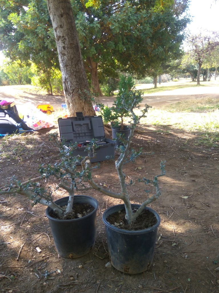 workshop_nov_2017 (45).jpg